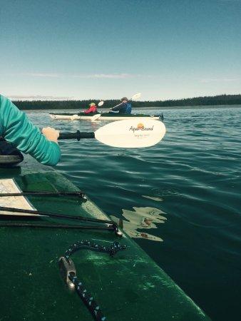 Gustavus, AK: Barlett Cove paddle