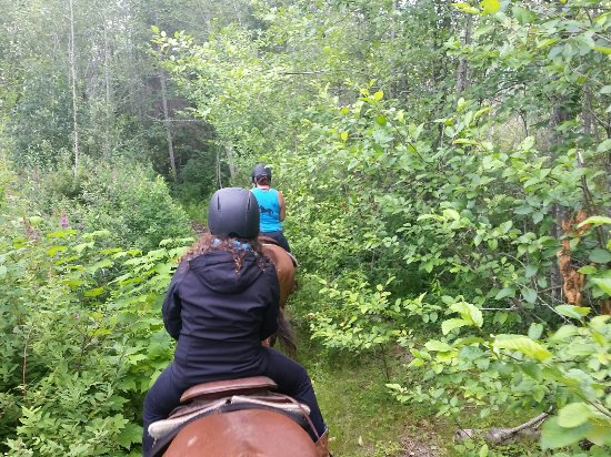 Errington, Canada: On a trail ride at Tiger Lily Farm.