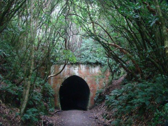 Owaka, นิวซีแลนด์: Tunnel Hill