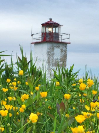 St. Martins, Canadá: Wildflowers at lighthouse