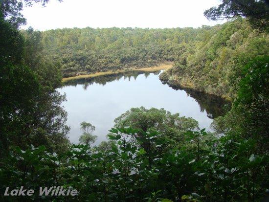 Owaka, นิวซีแลนด์: Lake Wilkie, Bush walk