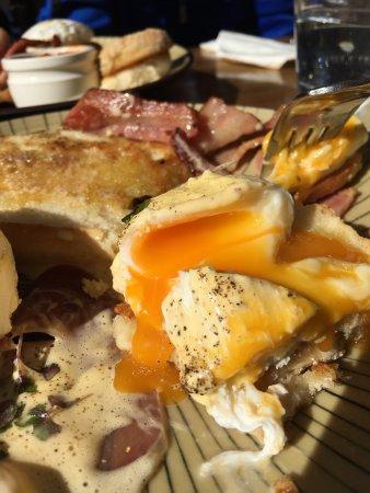 Mount Gravatt, Australien: Eggs Benedict. Look at that glorious, Magma-like egg yolk