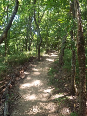 Chapel Hill, TN: path to the observation tower