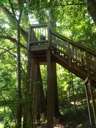 Chapel Hill, TN: observation tower