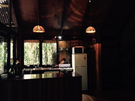 Atherton, Australien: Beatiful setting and tasteful treehouse. The rainforest is something else! Full of beautiful pla