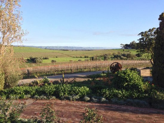 Coriole Winery: Views to match the wines