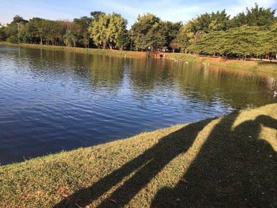 Parque dos Ipes