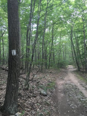 Boonsboro, MD: Annapolis Rock trail markers