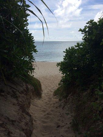 Nagamahama Beach Coast: 駐車スペースからビーチへ