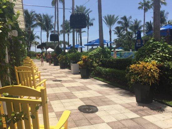 Kimpton Surfcomber Hotel: Paradise!