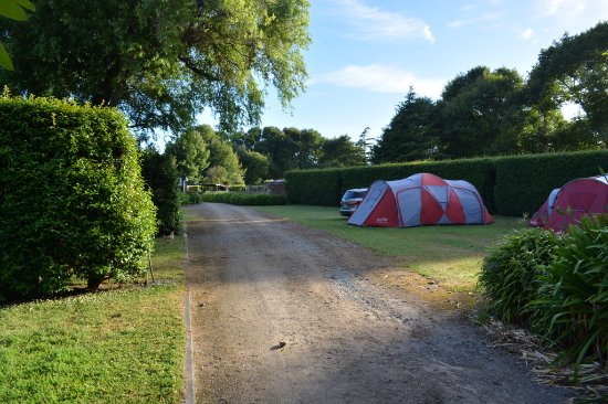 Waitotara, New Zealand: Third row of camp sites