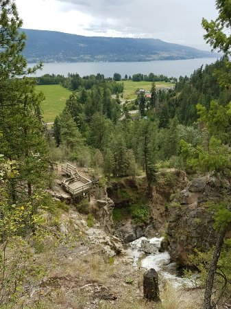 Fintry Estate & Provincial Park: 20160704_130759_large.jpg