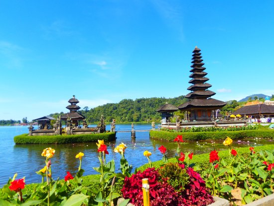 Todo Bali