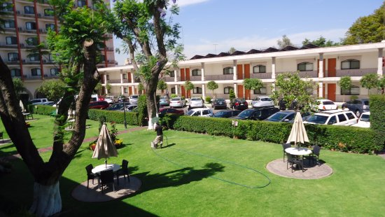 Malibu Hotel: Jardín