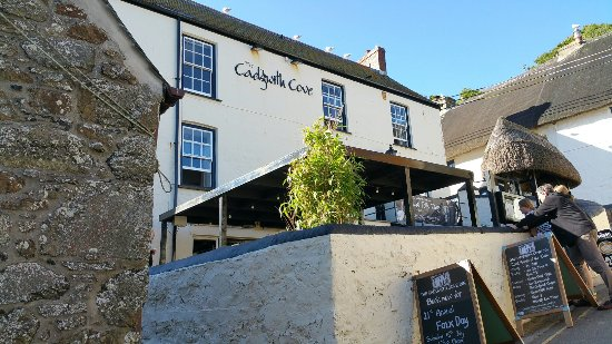 Cadgwith, UK: What a fabulous pub !!!