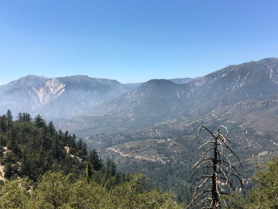 San Bernardino National Forest: photo1.jpg