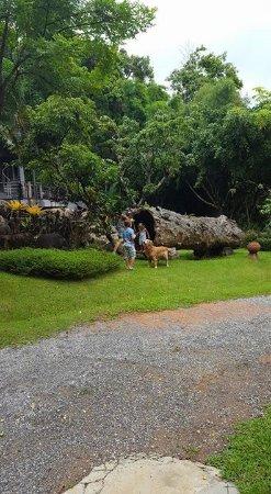 Bura Resort: Gardens