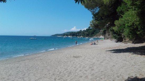 Image result for plaja vasilias skiathos
