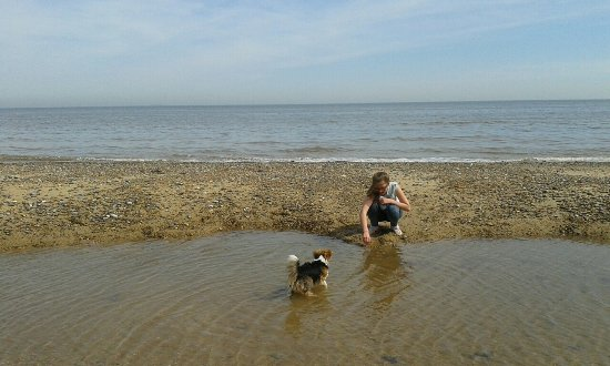 Happisburgh, UK: Fun for children and dogs