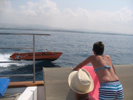 Paphos Sea Cruises: Dolphin twister