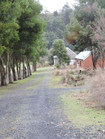 Branxholm, Australia: Drive down to cottage