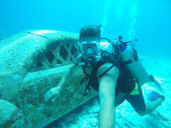 Deep Life Diving & Training: MUSA Cancun