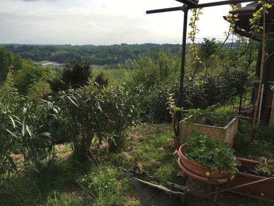 Cortazzone, Italy: Vista panoramica dal cortile/giardino del B&B