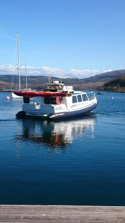 Isle of Jura, UK : DSC_0340_large.jpg