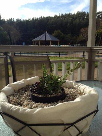 BIG4 Porepunkah Holiday Park : Pool view from cabin verandah
