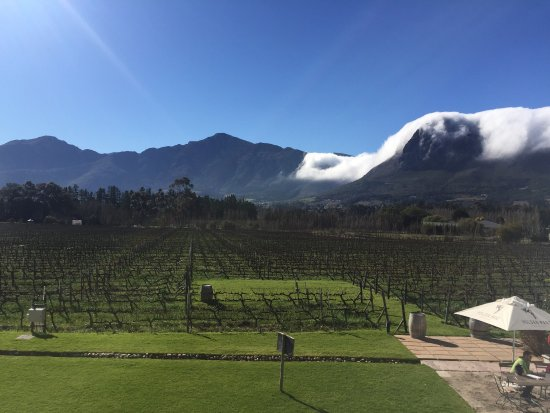 Franschhoek, Sudáfrica: photo1.jpg
