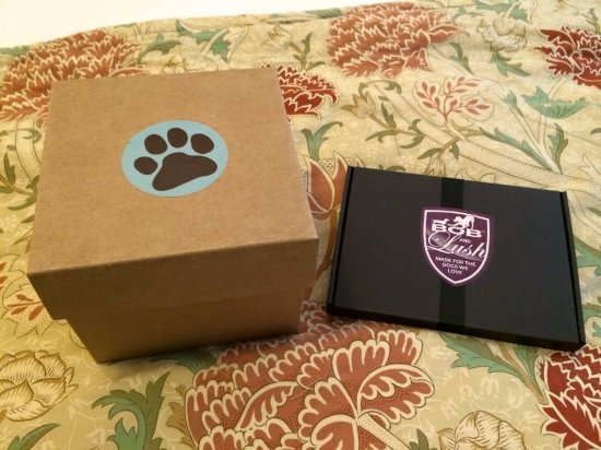 Closeburn, UK: Dog welcome pack!