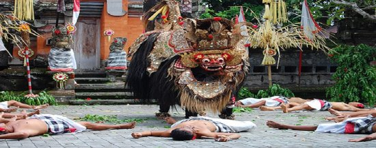 Bali Cham Tour and Travel