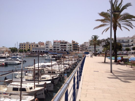 cafe thalassa: Cafe down the harbour, take in the view