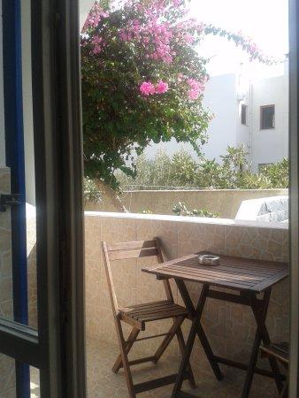 Hotel Anemones Picture