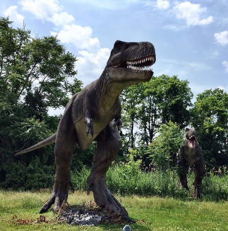 Field Station Dinosaurs Leonia 2019 All You Need To