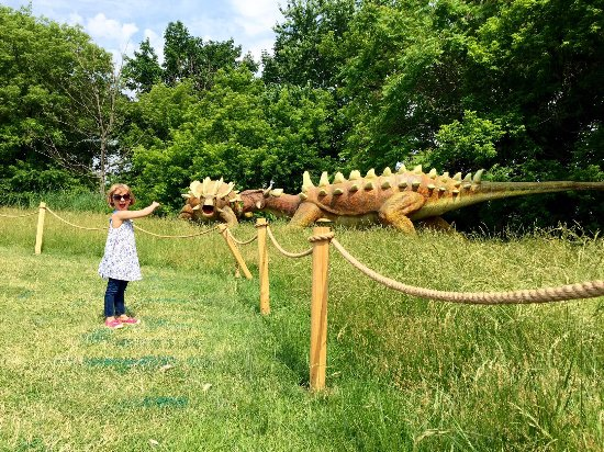 Field Station Dinosaurs w/ a 4&5 year old, so fun! - Picture