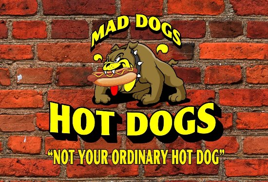 South Venice, FL: Our 'MAD DOG'