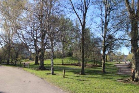 Kaisaniemen Puisto: 公園の中