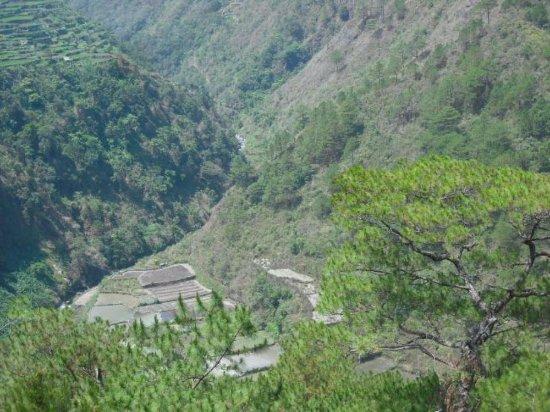 Bontoc, Филиппины: Détail vallée