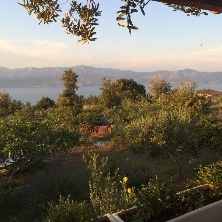 Landscape - Restoran Ziza Photo