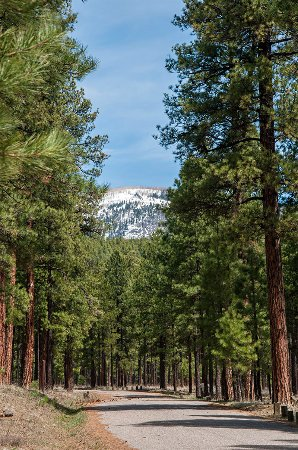 Jemez National Recreation Area
