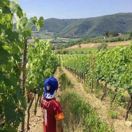 Agriturismo I Veroni: photo0.jpg