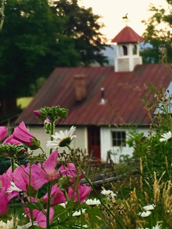 Huntington, VT: Flowers Windekind Farm