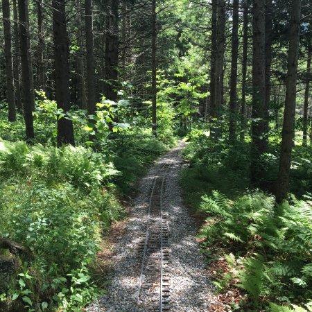 Huntington, เวอร์มอนต์: Garden Railroad at Windekind Farm