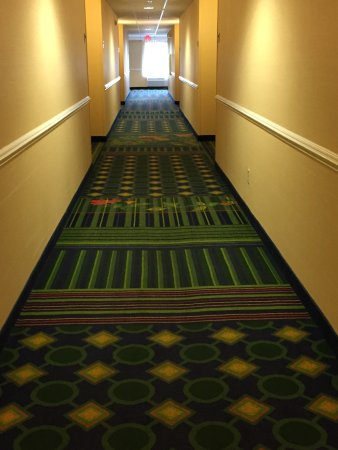 Fairfield Inn & Suites Charlottesville North : hallway is colorful