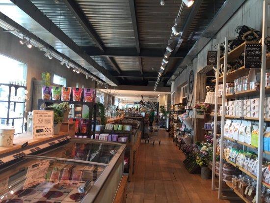 Interno negozio - Picture of Bindi Dessert, San Giuliano ...