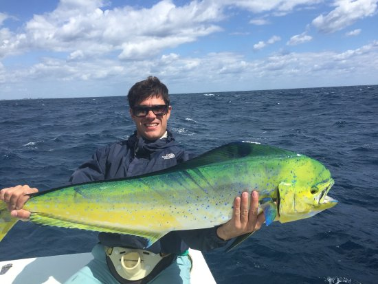 FishCastings: BIG Mahi !!!