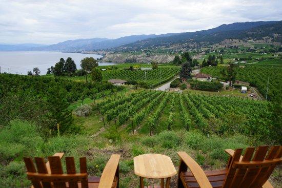 E'Laysa Guesthouse and Vineyard Retreat: Stunning view of the Naramata Bench