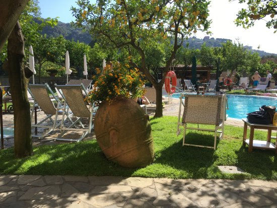 Antiche Mura Hotel: Pool with lemon trees all around