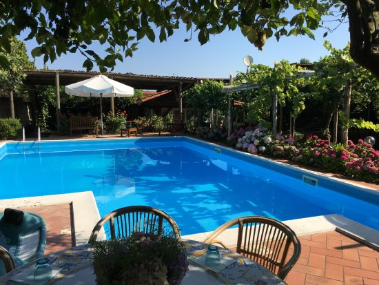 Villa Ida Cooking Lessons: Villa Ida Pools and Garden